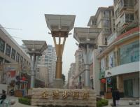 揭阳金城步行街